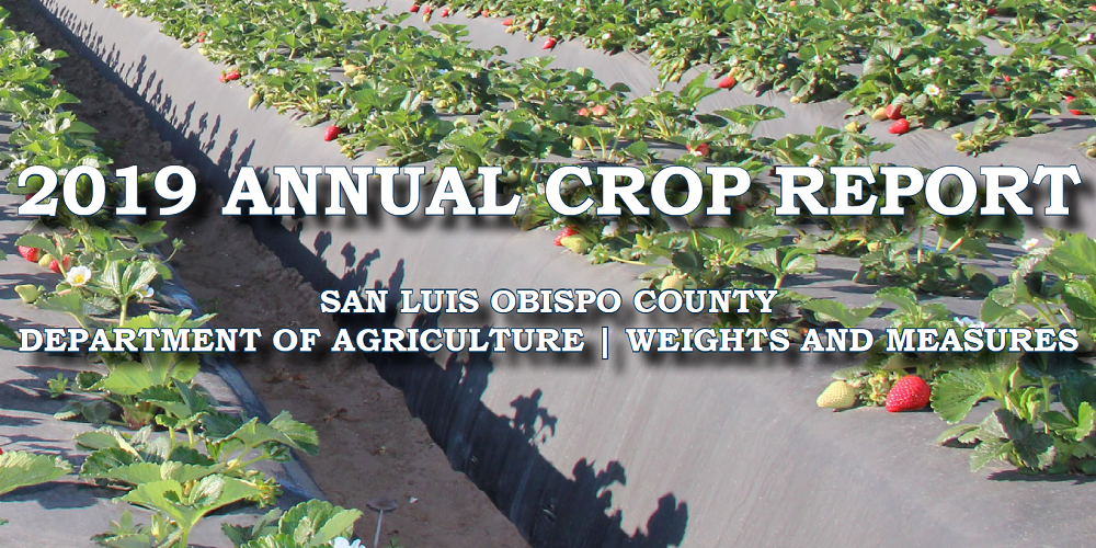 2019 Crop Report Cover Click to view article, 2019 Annual Crop Statistics Released