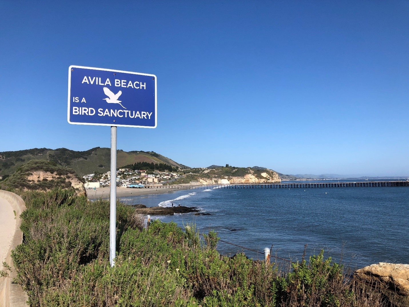 Avila Beach is a Bird Sanctuary Sign in the foreground with the town of Avila Beach and the ocean in the distance